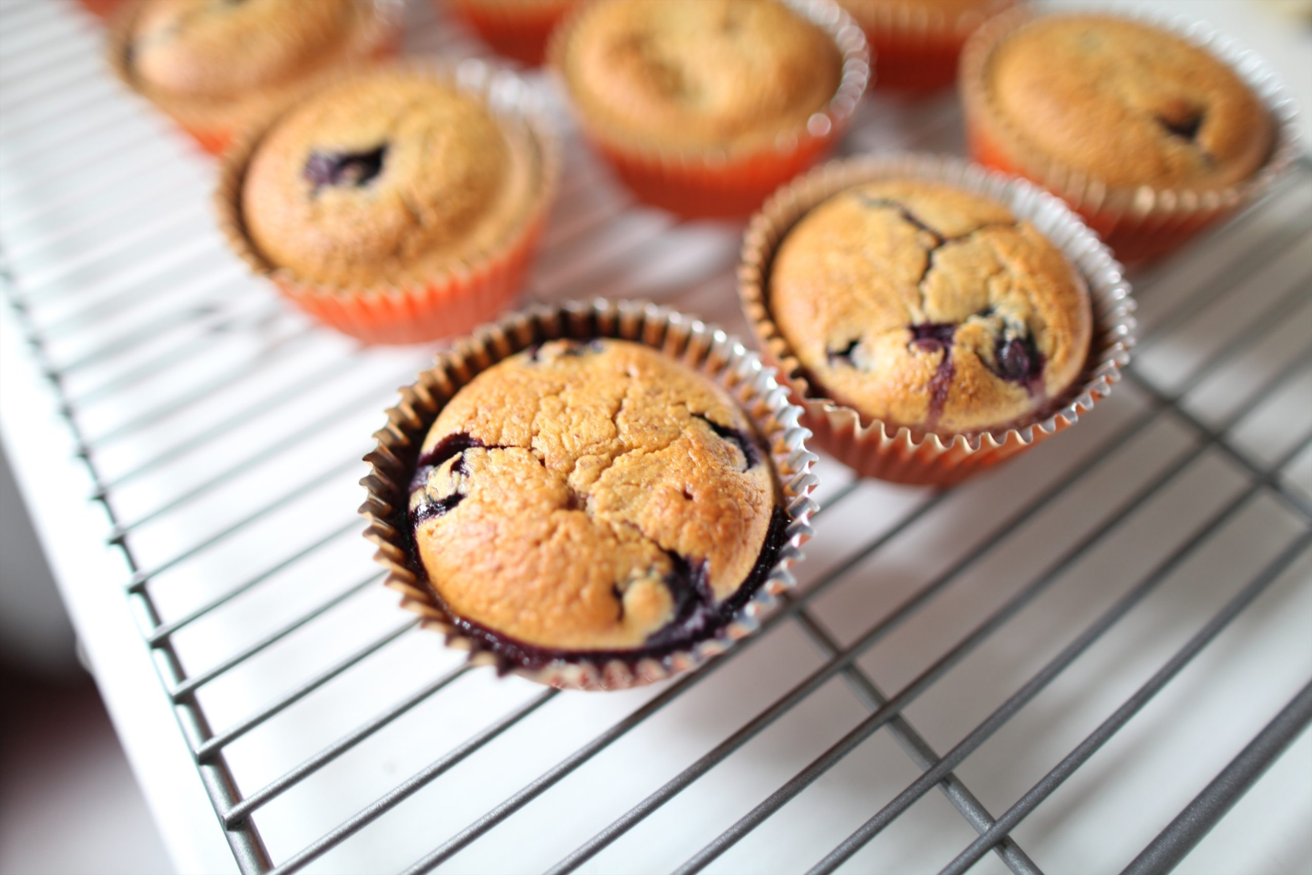 freshly baked berry muffins