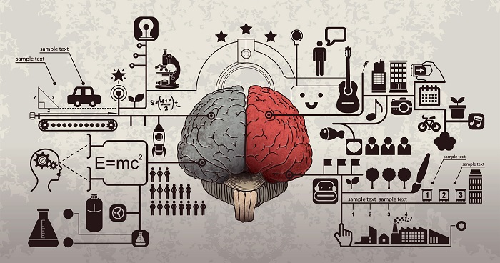 The Cognitive Science Behind Complex Content Retention