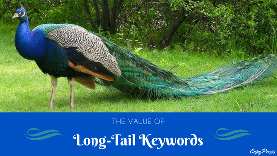 The Value of Long-Tail Keywords