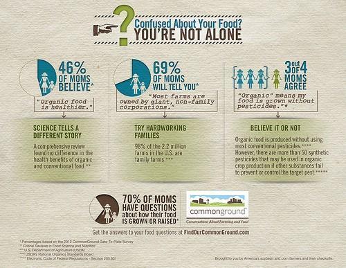 popular infographics