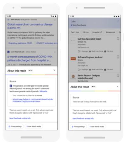 screenshot of google SERP new panel